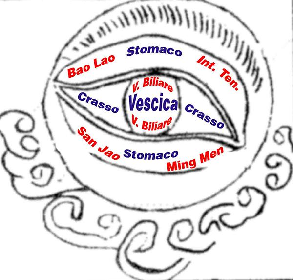 Iridologia Milano - Vieni all'EFOA